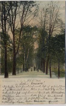 AK Weißenfels an der Saale Bad-Allee Badallee 1901 RAR