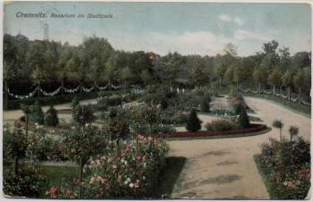 AK Chemnitz Rosarium im Stadtpark 1910