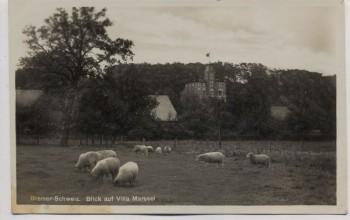 AK Foto Bremen Blick auf Villa Marssel mit Schafen Bremer Schweiz Burglesum Lesum 1935
