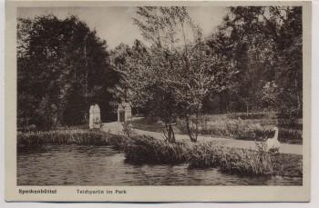 AK Bremerhaven Lehe Speckenbüttel Teichpartie im Park 1928