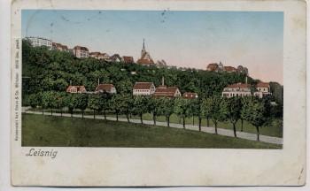 AK Leisnig in Sachsen Ortsansicht 1909
