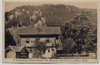AK Neuwald bei Frein a. d. Mürz Karl Digruber's Gasthaus bei St. Aegyd am Neuwalde Mürzsteg Niederösterreich Österreich 1920