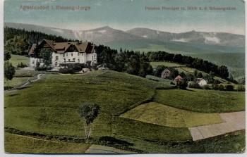 AK Agnetendorf im Riesengebirge Pension Hoeniger Schneegruben Jagniątków b. Jelenia Góra Schlesien Polen 1921