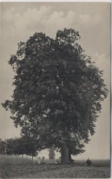 AK Hořiněves bei Hradec Králové Schlachtfeld bei Königgrätz 1866 Denkmal des k. u. k. 57. Inf.-Reg. mit 2 Linden Tschechien 1910