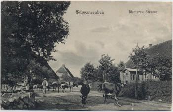 AK Schwarzenbek in Schleswig-Holstein Bismarck Straße mit Kühen 1906