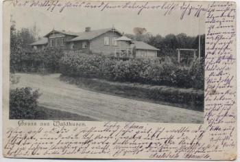 AK Lübeck Kücknitz Gruss aus Waldhusen 1898