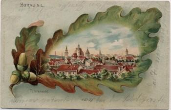 AK Litho Eichelblatt Sorau Żary Ortsansicht Neumark / Ostbrandenburg Polen 1904 RAR
