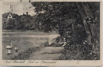 AK Helmstedt Teich im Brunnental 1941