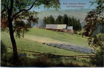 AK Ried zwischen Munster (Haut-Rhin) Münster und Kahlenwasen Elsass Frankreich 1910