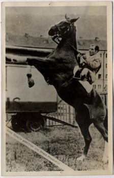 AK Foto Zirkus Frankello Erwin Frankello auf Pferd 1955