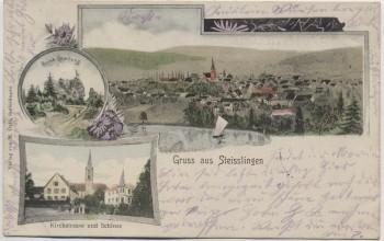 AK Gruss aus Steisslingen Ortsansicht mit Kirchstrasse und Schloss 1906 RAR