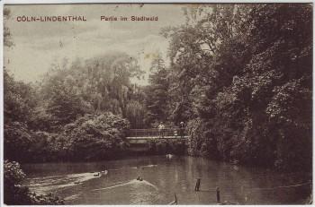 AK Köln Lindenthal Partie im Stadtwald 1913