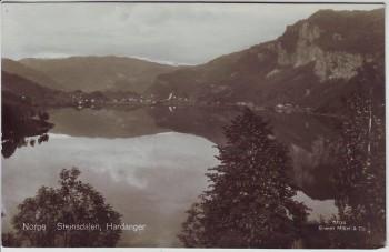 AK Foto Steinsdalen Hardanger Norge Norwegen 1930