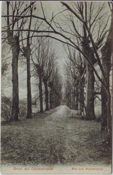 AK Gruss aus Oßmannstedt Weg zum Wielandsgrab bei Ilmtal-Weinstraße 1910 RAR