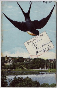 AK Gruss aus Grimma Ortsansicht mit Schwalbe 1908