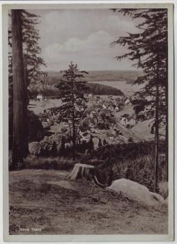 AK Tanne (Harz) Ortsansicht bei Oberharz am Brocken 1950
