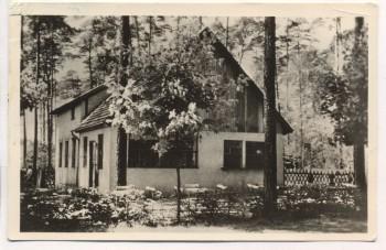 VERKAUFT !!!   AK Wernsdorf b. Königs Wusterhausen Gasthaus Seeblick am Crossinsee Krossinsee 1959