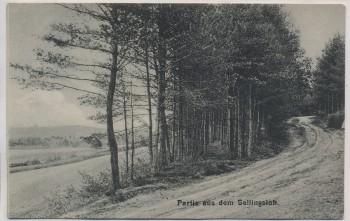 VERKAUFT !!!   AK Partie aus dem Sellingsloh b. Hoyerhagen Hoya 1910