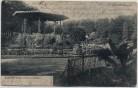 AK Elberfeld Wuppertal Zoologischer Garten 1905