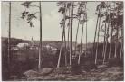AK Gruß aus der Jerichower Schweiz Magdeburgerforth bei Möckern 1914