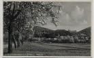 AK Foto Seeheim Jugenheim an der Bergstraße Blütezeit Ortsansicht 1940
