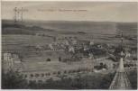 AK Braunfels Villenkolonie vom Burgfrieden aus gesehen 1914