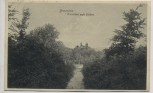 AK Braunfels Waldblick auf das Schloß 1914