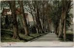 AK Baden-Baden Seufzerallee 1910