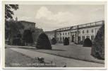 AK Dessau Lustgarten und Schloss 1930