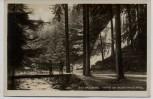 AK Foto Bad Harzburg Partie am Radau-Wasserfall 1930