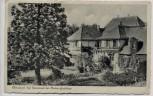 AK Rheininsel Hof Nonnenau bei Mainz Ginsheim 1954