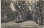 AK Hannover Eilenriede beim Neuen Haus 1909