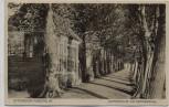 AK Otterndorf Niederelbe Gartenhaus am Norderwall 1932