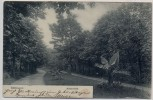 AK Göttingen Kaiserallee 1903