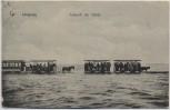 AK Nordseebad Langeoog Ankunft der Gäste Pferdekutsche 1914
