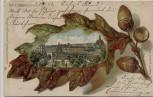 AK Wiesbaden Rochbrunnen mit geprägtem Eichenblatt Kunstanstalt Rosenblatt 1903