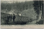 AK Eisenberg in Thüringen Gruss aus dem Mühltal Blick nach der Naupoldsmühle mit Wanderer 1904