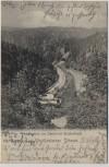 AK Gruss aus der Vogtländischen Schweiz Partie im Steinicht Elstertal Bahngleis b. Pöhl 1901