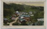 AK Rentzschmühle Ortsansicht Elstertal b. Pöhl 1929