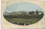 AK Luftkurort Gladenbach Blick auf Giessener Strasse Nachgebühr 1912