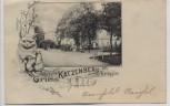 AK Gruss vom Katzenberg bei Krögis Nossen Katze 1901 RAR