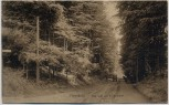 AK Flensburg Weg nach der Kupfermühle 1911 RAR