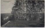 AK Reinbek Neu Wentorf Am Haidberg Villen 1921 RAR