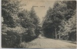 AK Vossloch Waldweg bei Barmstedt Bokholt-Hanredder 1917