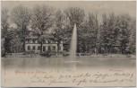 AK Gruss aus Zittau Weinaupark mit Restaurant 1899