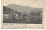 AK Gruss aus Erdhausen Ortsansicht Gladenbach 1909 RAR