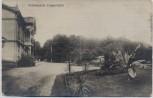VERKAUFT !!!   AK Foto Schiessplatz Tangerhütte Logierhaus mit Kanone und Palmen 1920 RAR