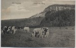 AK Hardegsen Hühn'sche Burg mit Kühen 1910 RAR