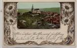 AK Passepartout Weida mit Schloss Osterburg Thüringen 1902
