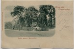 AK Gruss aus Crimmitschau Partie aus dem Bismarckhain 1902